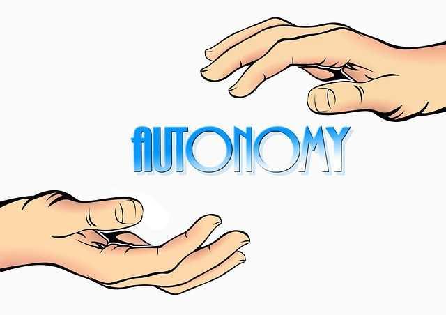 autonomy-298474_640